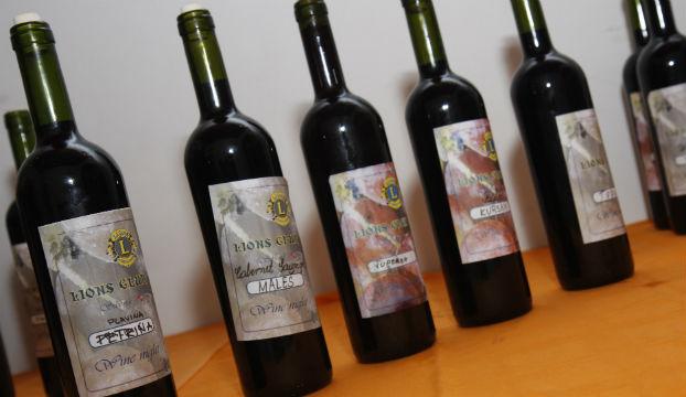 mlado vino lions
