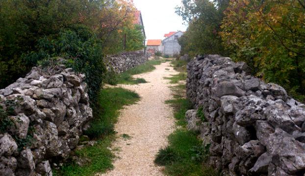 vukovarska DRNIS