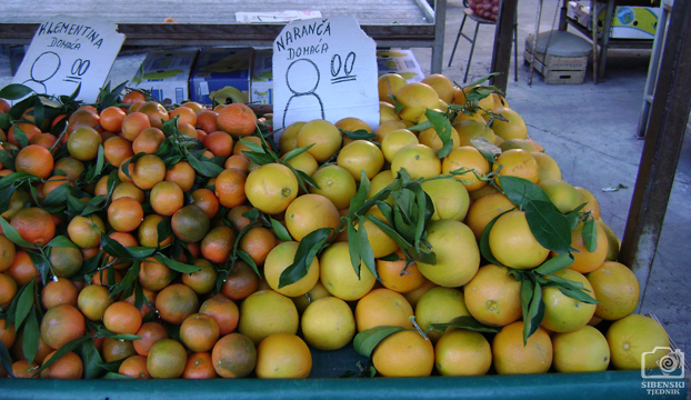 pijaca klementina naranca