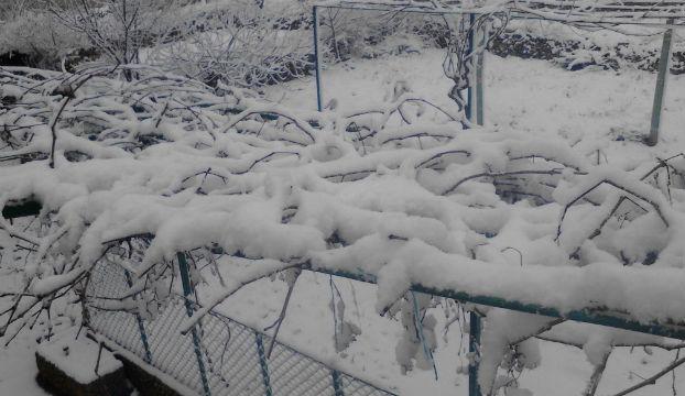miljevacki-bogatici-snijeg-1
