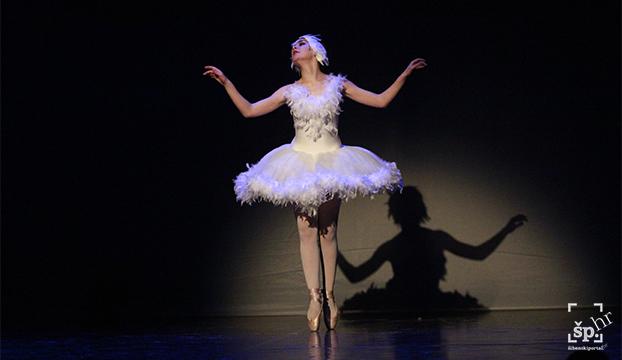 balet gala vecer6