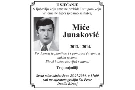 mice junakovic