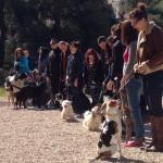 FOTO: Otvoren park za pse u Rokićima, na izložbi najljepšim proglašen mješanac Taz