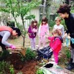 FOTO: Mališani iz DV 'Šibenski tići' u akciji čišćenja okoliša svog vrtića