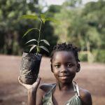 Jeste li znali da postoji biljka koja detektira mine i da se u najsiromašnijim dijelovima Afrike koriste solarni paneli?