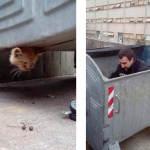 VATROGASCI JVP ŠIBENIK NA SVE SPREMNI: Ulaze čak i u kontejnere!