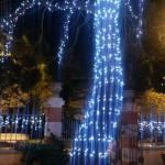 FOTO: Božićna čarolija Šibenika