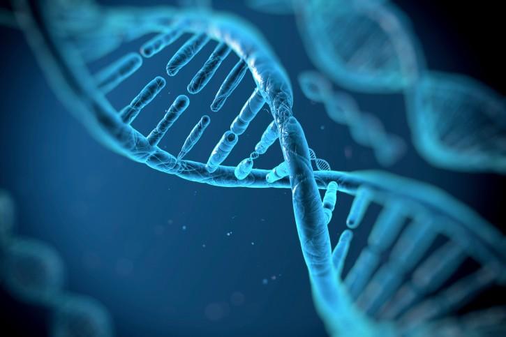 geni | Najčitaniji portal Šibe...