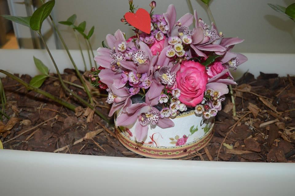 cvijece cvita1