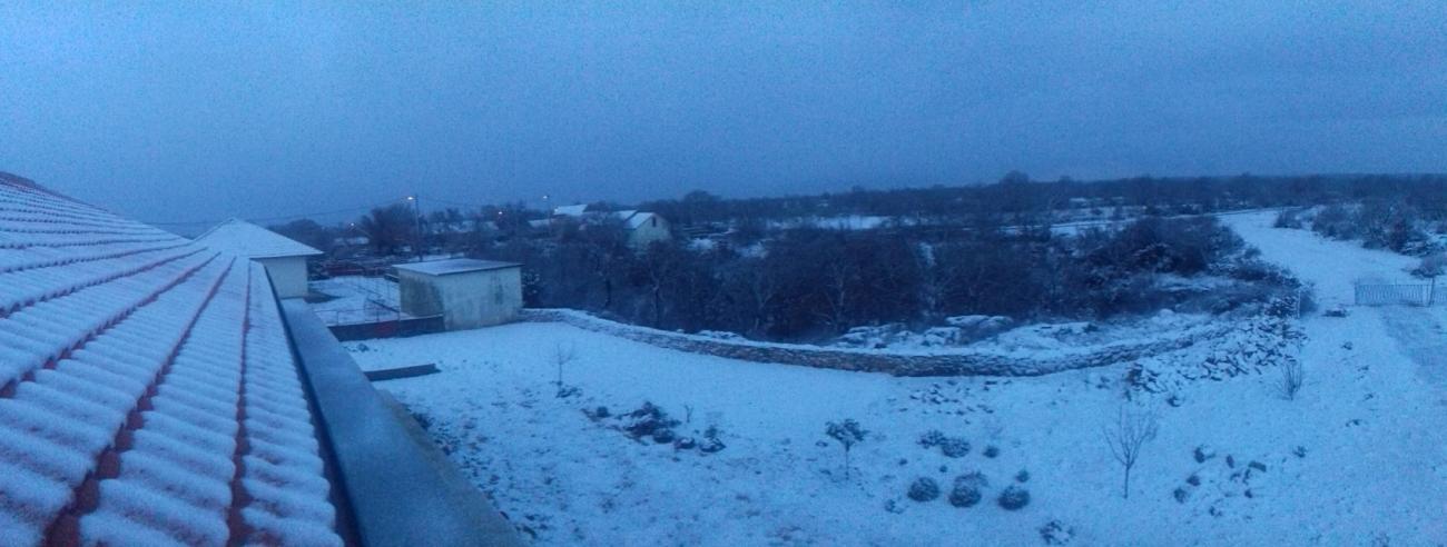 bogatici snijeg