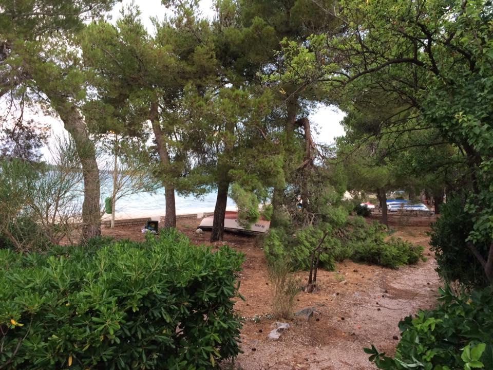 stablo jadrija3