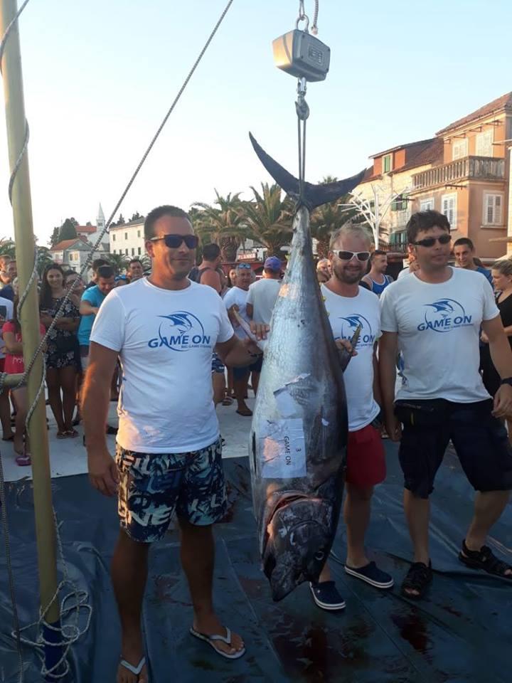 tuna fever