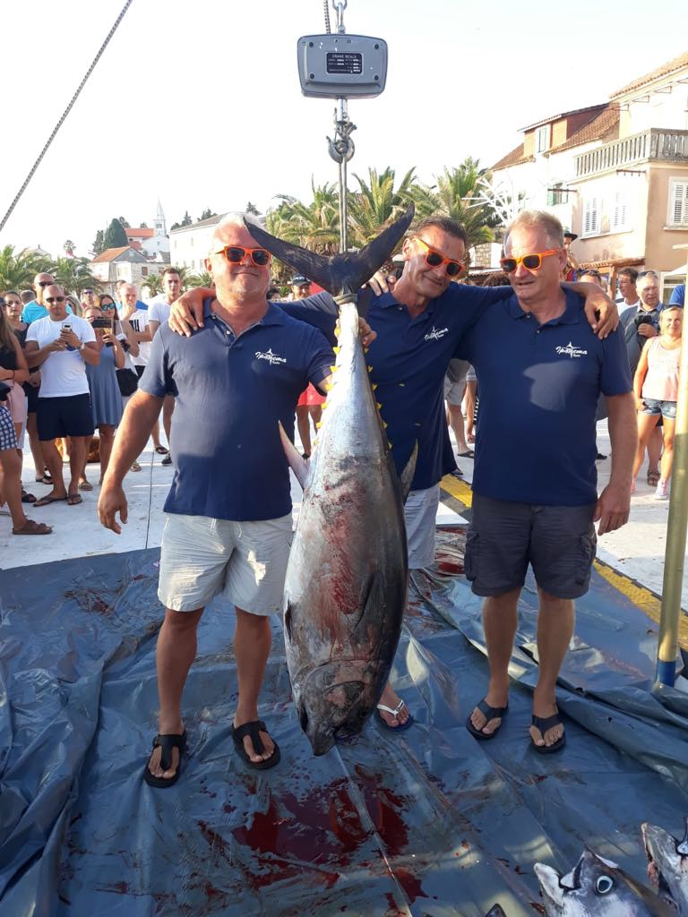 tuna fever2